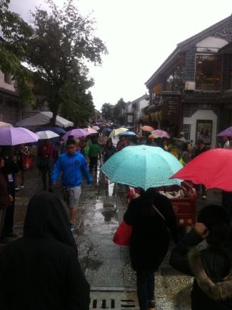 Dali in the rain